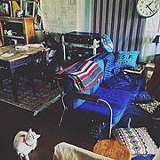 彼女(猫)と彼(猫)と僕の日常/ブリティッシュヴィンテージ/短編更新しました/NEWGATE…などのインテリア実例