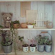 室内ガーデニング/多肉植物/あみもの/ホワイト/My Shelf…などのインテリア実例