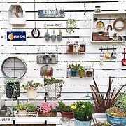 gardening/庭の花/ナチュラルガーデン/garden/ガーデン/ガーデニング…などのインテリア実例