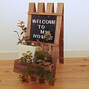 カメラマーク出現/観葉植物/welcome/ウェルカム/すのこリメイク/すのこ…などのインテリア実例