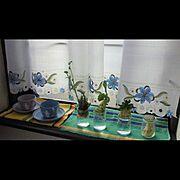 マグカップ/ウェッジウッド /ウェッジウッド ジャスパー/窓デコレーション/Kitchen…などのインテリア実例