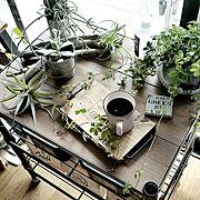 インテリアオフィスワン/My Desk/アイアンシャンデリア/しまむら…などに関連する他の写真