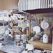Kitchen/空き瓶/ニトリ/100均/グリーンのある暮らし/賃借…などのインテリア実例