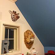 マリオ/アニマルマスク/青い壁/屋根裏部屋みたい/子供部屋 /Overview…などのインテリア実例