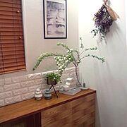 チランジア/水耕栽培/桜/新緑/葉桜/多肉植物…などに関連する他の写真