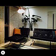 オーガスタ/観葉植物/バルセロナチェア/Lounge…などのインテリア実例