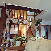 定点観測/休日/こどもと暮らす。/ウンベラータ/本棚/本棚DIY…などに関連する他の写真