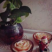 クリスマス/雑貨/植物/観葉植物…などのインテリア実例