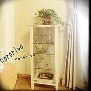ガラスケースをリメイク/錆さび加工/観葉植物/ホワイトシャビー/DIY/ハンドメイド…などのインテリア実例