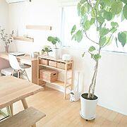 すのこアレンジ♡/DIY初心者/室外機 カバー/Overviewに関連する他の写真
