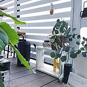 IKEA/マンション暮らし/グリーンのある暮らし/ベランダ/ドウシシャ・モニター/ベランダガーデン…などのインテリア実例
