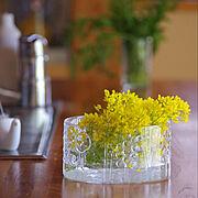 花のある暮らし/10000人の暮らし/暮らしの一コマ/庭の花/菜の花/フローラ…などのインテリア実例