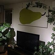 アーバンリサーチドアーズ/観葉植物/ボタニカル/すっきりとした暮らし/おうちカフェ…などに関連する他の写真