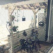ガーデン/ガーデニング/パーゴラDIY/Bedroom…などのインテリア実例
