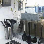 山善キッチンモニター応募/インスタ→coyosi58/いなざうるす屋さん/ペイント…などに関連する他の写真