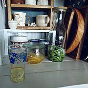 ゴーヤ/インテリアじゃないですが…/Kitchenに関連する他の写真