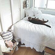 フレンチカントリー/ホーロー/極小キッチン/壁面収納/板壁DIY/キッチン雑貨…などに関連する他の写真
