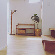 ファイルボックス/ダイソー/キッチン収納/IKEA/セリア/無印良品…などに関連する他の写真