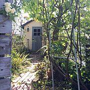 Entrance/ガーデン/ドア/DIY小屋/ジャンク/ランタン…などのインテリア実例