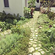 石の道DIY/My Shelf/庭…などのインテリア実例