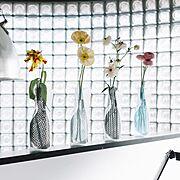 北欧/玄関/入り口/一輪挿し/モノトーン/折りたためる花瓶/簡易花瓶…などのインテリア実例