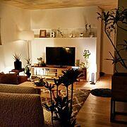 セリア/3Coins/ダイソー/カフェ風/ハムスターのいる暮らし/ハムスターのお家…などに関連する他の写真