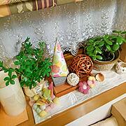 ドライフラワー/DIY/カラーボックス/カラボリメイク/扉DIY/My Shelf…などに関連する他の写真