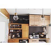 新築一戸建て/アレスタ/リクシル/momo natural/モモナチュラル/IKEA…などのインテリア実例