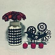 カジタノ/キッチン 背面収納/暮らし/おうち/注文住宅/マイホーム記録…などに関連する他の写真