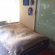 暮らし/Bedroom…などのインテリア実例