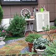 手作りの庭/コニファー/ペンタス/ラベンダー/アメリカンブルー/ニチニチソウ…などのインテリア実例