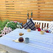 お花身✖️→お花見◎/ワンコと暮らす家/ワンコのいる生活/いぬのいる暮らし/ittala…などのインテリア実例