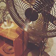 ちらリビング/団地/団地らぶ/リサイクルショップ/扇風機/Lounge…などのインテリア実例