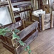 Overview/ひとり暮らし/リサイクルショップ/写真を飾る/8畳ワンルーム…などに関連する他の写真