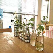 IKEA/ハンドメイド/足場板/DIY/男前/塩系インテリアの会…などに関連する他の写真