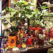 リアルグリーン/メキシコ/インド/陶器/マライカ/カラフル好き…などのインテリア実例