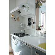 グリーンのある暮らし/鍋敷き/鍋つかみ/吊るす収納/ポトル/マイキー…などのインテリア実例