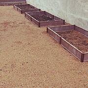 DIY/ガーデニング/家庭菜園/Entrance…などのインテリア実例
