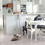 玄関収納/再投稿/シンプル/コンテスト参加/IKEA/北欧…などに関連する他の写真