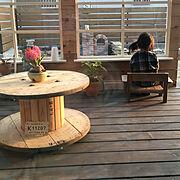 多肉植物/観葉植物/ウッドツリー/イッタラ/Loungeに関連する他の写真