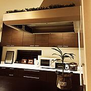 グリーン/植物/100均アイテム/すりーこいんず/Kitchen…などのインテリア実例