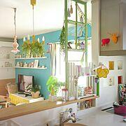 DIY/カラーボックス/niko and… /変わりばえなし/観葉植物…などに関連する他の写真