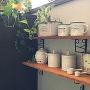 ダイソー/DIY棚/セリア/観葉植物/みどりのある暮らし/グリーン×雑貨…などのインテリア実例