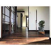 北欧/家づくり/無垢材/無垢材の床/ペンダントライト/照明…などに関連する他の写真