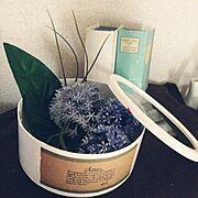 紙箱/ニトリ/シール作成/植物/柳美菜子さん/フェイクグリーン…などのインテリア実例