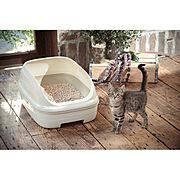 猫砂のインテリア実例写真