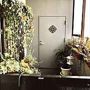 マンション暮らし/RCの出会いに感謝♡/NO GREEN NO LIFE/アイアン壁飾り…などのインテリア実例