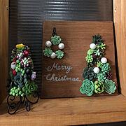 手作り感満載/粘土多肉/樹脂粘土/ミンネ始めました♡/クリスマスツリー/クリスマスリース…などのインテリア実例