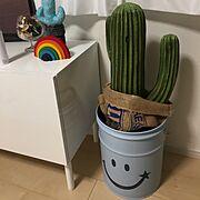 楽天で買ったもの/フェイクグリーン/IKEA/ニトリ/ブルーが好き♡/ホワイト…などのインテリア実例