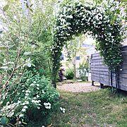 植物/子どもと暮らす/DIY/Entrance…などのインテリア実例